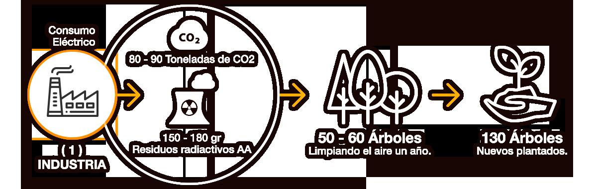ciclo ecológico