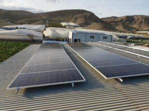 Energía solar sector agroalimentario