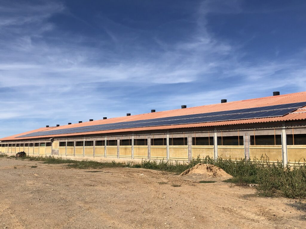 energia solar para granjas