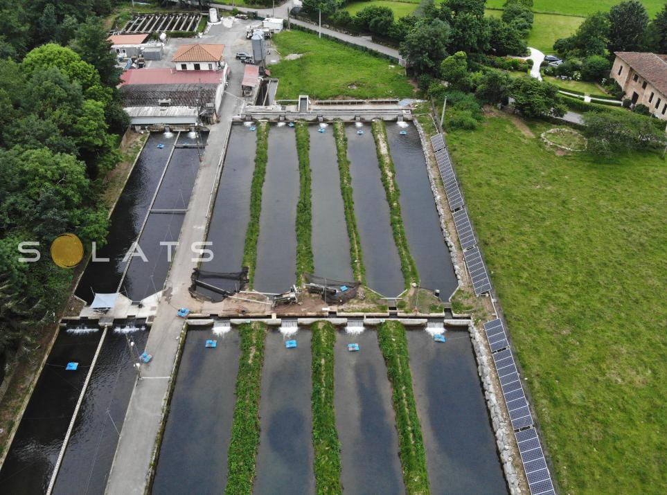 Instalación de placas solares en una piscifactoria